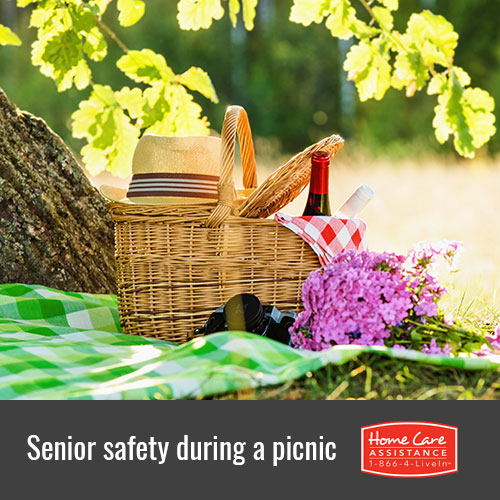 Keeping the Elderly Safe During a Summer Picnic in Waterloo, CAN