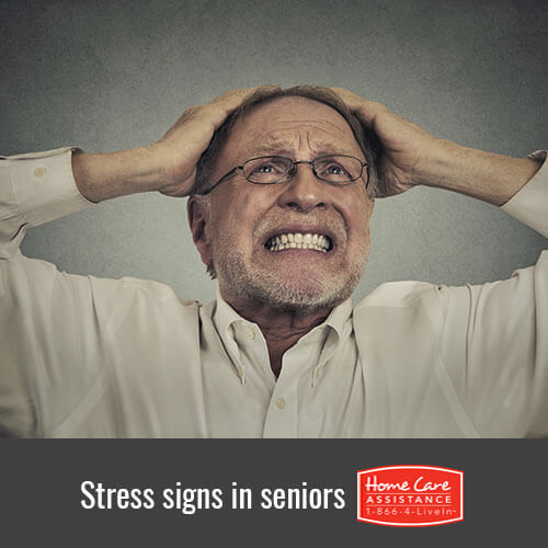 Noticing Signs of Stress in the Elderly