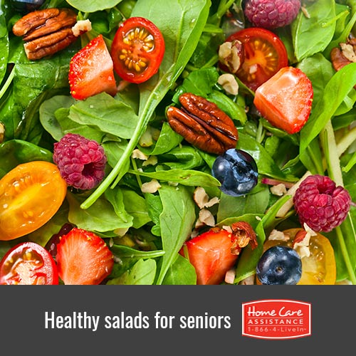 4 Nutritious Salads for Seniors in Waterloo, CAN