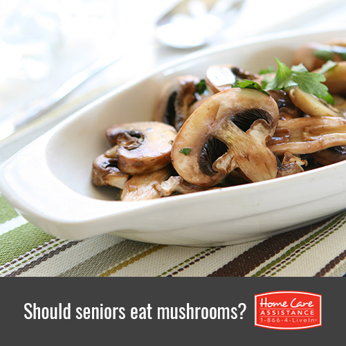 Should Seniors Eat Mushrooms Often in Waterloo, CAN?
