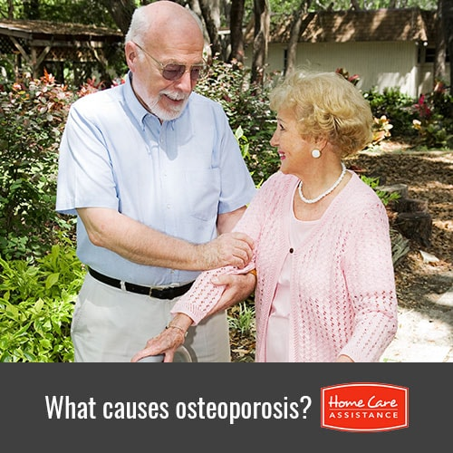 How Osteoporosis Is Caused in Seniors in Waterloo, ON, Canada