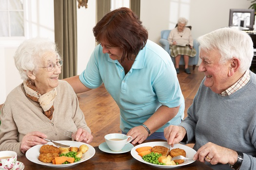 Importance of Nutrients for Seniors in Waterloo, ON