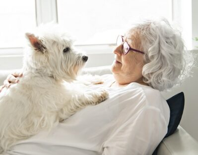 Pet Therapy Perks for Your Senior Loved One in Waterloo, ON